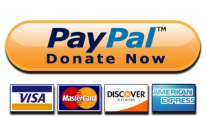 paypal-donate2_lmsauth_a03468560b5a683967e50d20e9897cc38daf0065